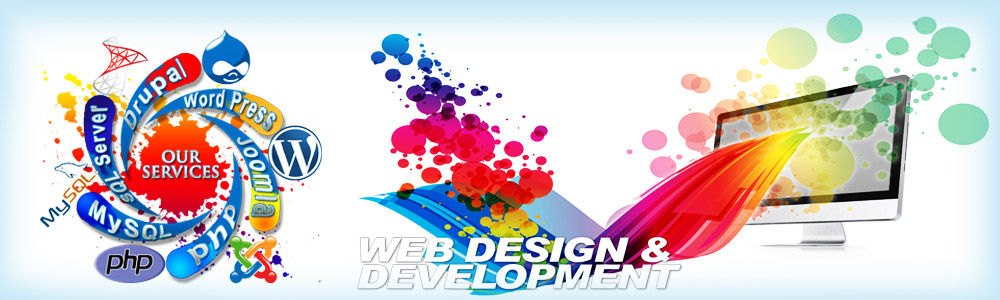 Web Designing and Development in Noida